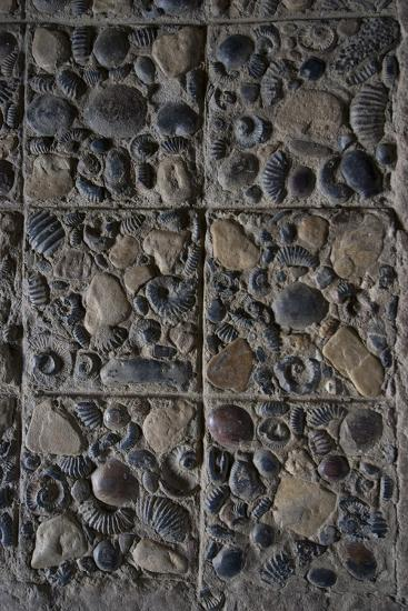 Pavement Made from Fossils, Convento Santo Ecce Homo, Near Villa De Leyva, Colombia-Natalie Tepper-Photo