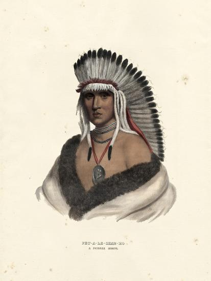 Pawnee Brave-McKenney & Hall-Art Print