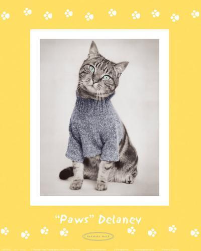 Paws Delaney-Rachael Hale-Art Print