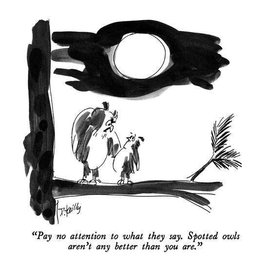 """""""Pay no attention to what they say.  Spotted owls aren't any better than y?"""" - New Yorker Cartoon-Donald Reilly-Premium Giclee Print"""