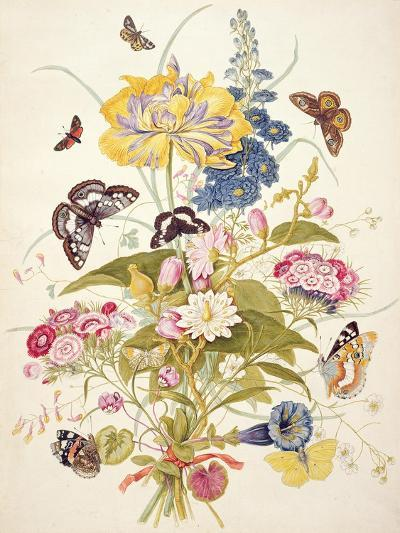 Pd.912-1973 Still Life of Flowers Including a Parrot Tulip, Larkspur, Sweet William, Gentian and…-Thomas Robins-Giclee Print