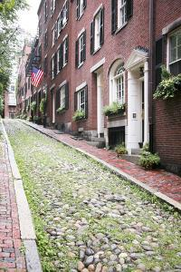 Acorn Street, the Oldest Street in the Beacon Hill Area of Boston Massachusetts by pdb1