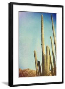 Desert Cactus With An Artistic Texture Overlay by pdb1
