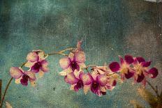Desert Cactus With An Artistic Texture Overlay-pdb1-Art Print