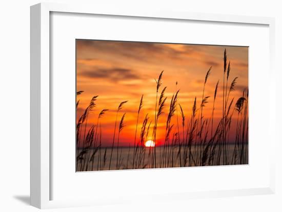 Peaceful Chesapeake Bay Sunrise in Calvert County, Maryland.-Yvonne Navalaney-Framed Photographic Print