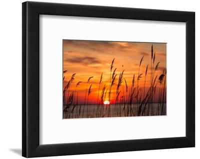 Peaceful Chesapeake Bay Sunrise in Calvert County, Maryland.-Yvonne Navalaney-Framed Photographic Print