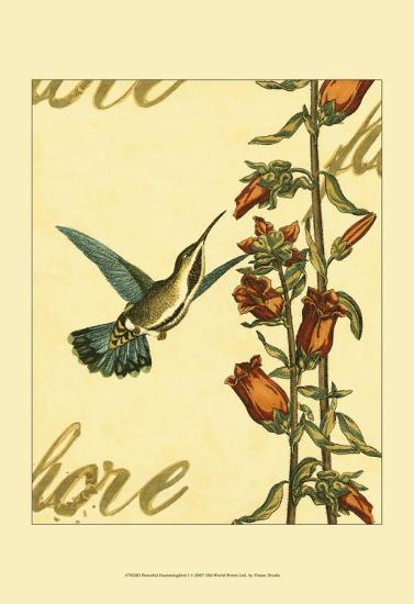 Peaceful Hummingbird I--Art Print