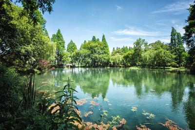 Peaceful Lake Scene with Greenery at One of the Lesser known Spots at West Lake in Hangzhou-Andreas Brandl-Photographic Print