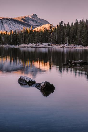 Peaceful Morning Reflection Yosemite Tioga Pass Tenaya Lake-Vincent James-Photographic Print