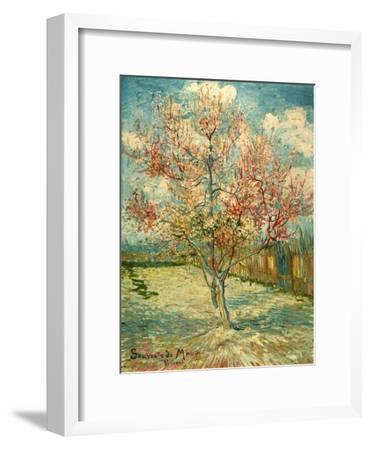 Peach Blossoming (Souvenir De Mauve)