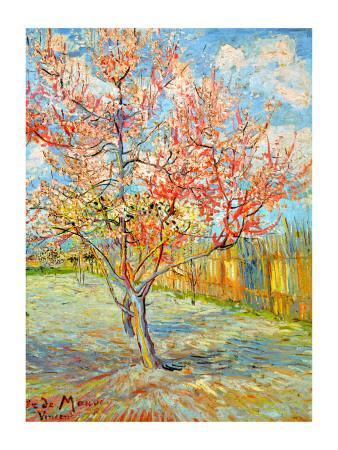 https://imgc.artprintimages.com/img/print/peach-tree-in-bloom-at-arles-c-1888_u-l-elfk50.jpg?artPerspective=n