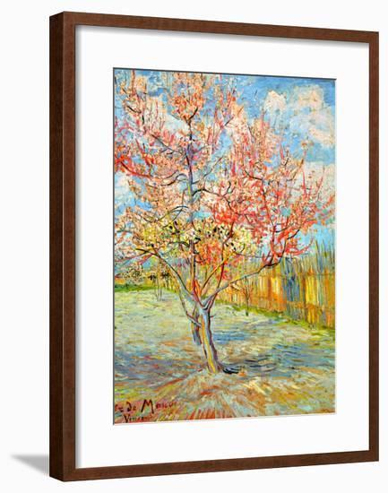 Peach Tree in Bloom at Arles, c.1888-Vincent van Gogh-Framed Giclee Print