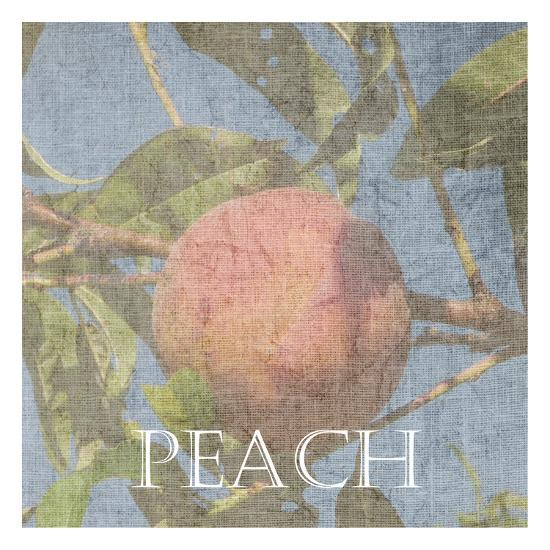 Peach-Sheldon Lewis-Art Print