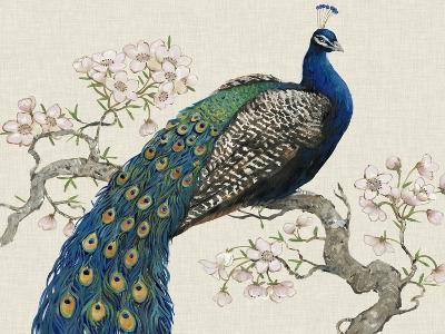 Peacock and Blossoms I-Tim O'toole-Art Print