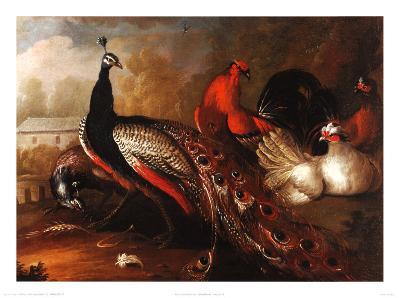 Peacock and Pheasant-Marmaduke Cradock-Art Print