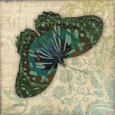 Peacock Bfly 2-Diane Stimson-Art Print
