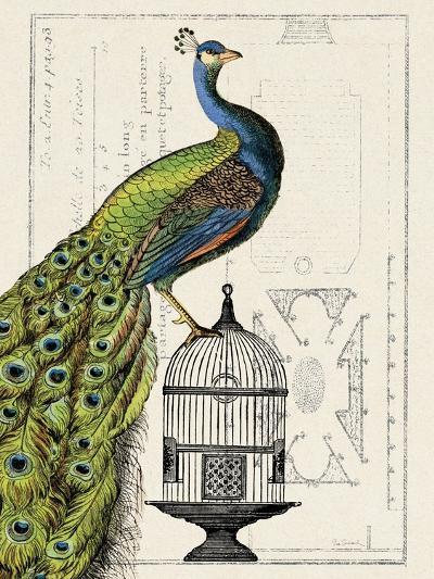 Peacock Birdcage I-Hugo Wild-Art Print