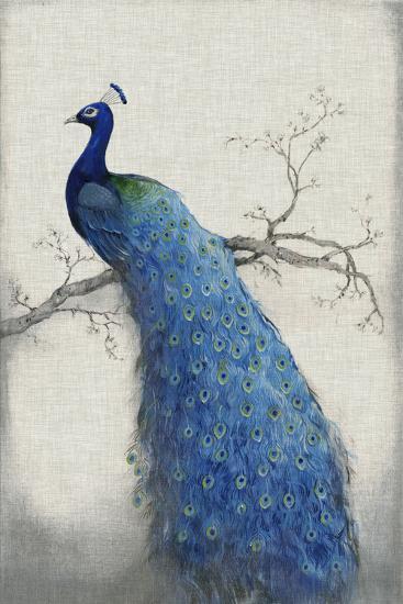 Peacock Blue II-Tim O'toole-Art Print