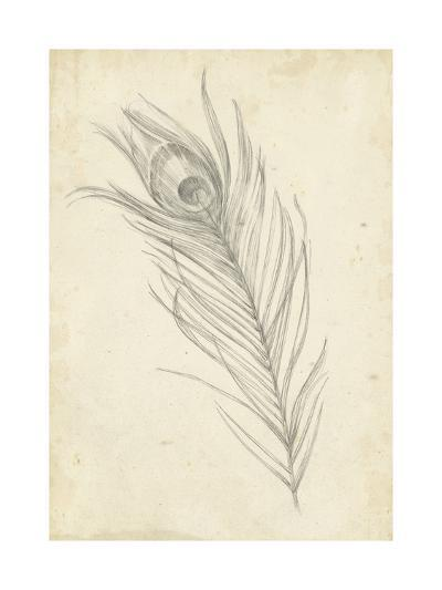 Peacock Feather Sketch I-Ethan Harper-Art Print