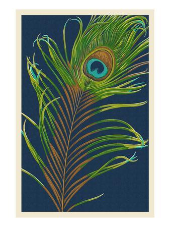 https://imgc.artprintimages.com/img/print/peacock-feather_u-l-q1gpjqp0.jpg?p=0