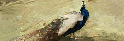 Peacock Panel 1-Sarah Butcher-Art Print
