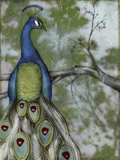 Peacock Reflections II-Jennifer Goldberger-Art Print