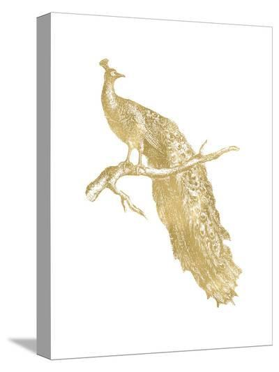 Peacock Single Golden White-Amy Brinkman-Stretched Canvas Print