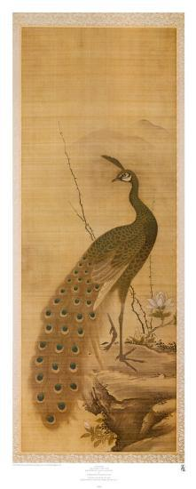 Peacock-Yanagisawa Kien-Art Print