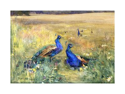 Peacocks in a Field-Mildred Anne		 Butler-Giclee Print
