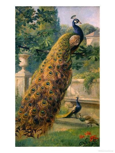 Peacocks in the Park, 1886-Olaf August Hermansen-Giclee Print