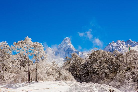 Peak of Mount Everest with snow covered forest, Himalayas, Nepal, Asia-Laura Grier-Photographic Print