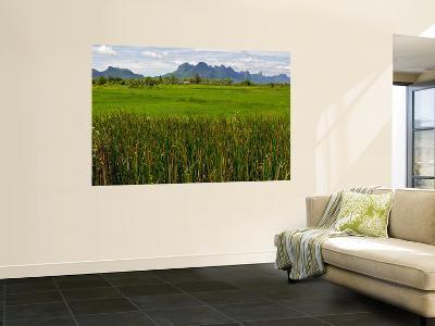Peaks in Khao Sam Roi Yot National Park across Fields-Nicholas Reuss-Wall Mural