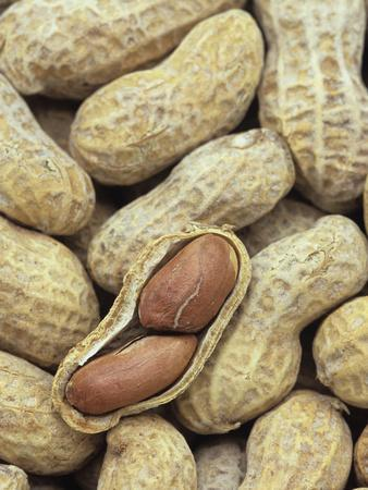Peanuts-Wally Eberhart-Photographic Print