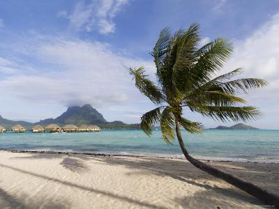 Pearl Beach Resort, Bora-Bora, Leeward Group, Society Islands, French Polynesia-Sergio Pitamitz-Photographic Print