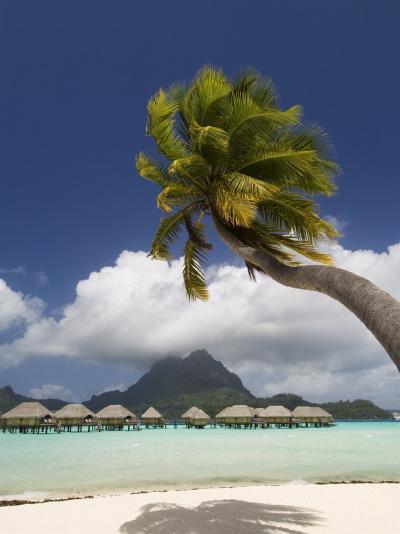 Pearl Beach Resort, Bora-Bora, Leeward Group, Society Islands, French Polynesia-Sergio Pitamitz-Photographic Print