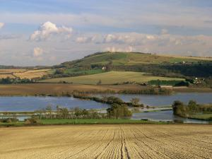 Arun Valley in Food, with South Downs Beyond, Bury, Sussex, England, United Kingdom, Europe by Pearl Bucknall