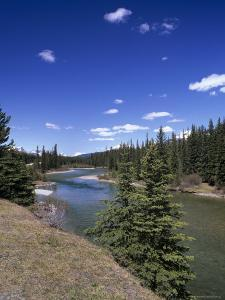 Bow River at Mount Temple Viewpoint on the Trans-Canada Highway, Banff National Park, Alberta by Pearl Bucknall