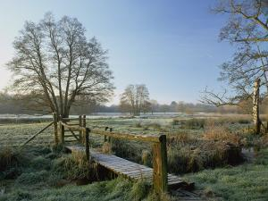Frost at Thundery Meadows, Elstead, Surrey, England, UK by Pearl Bucknall