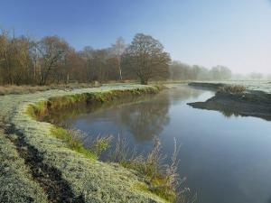 River Wey at Thundery Meadows, Surrey Wildlife Trust's Wetland Reserve, Elstead, Surrey, England by Pearl Bucknall
