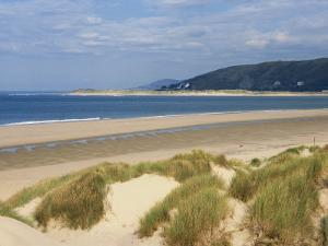 Sand Dunes and Borth Beach, Ynyslas, Borth, Dyfed, Wales, United Kingdom, Europe by Pearl Bucknall