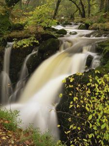 Small Waterfall on Aira River, Ullswater, Cumbria, England, United Kingdom, Europe by Pearl Bucknall