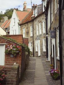 Terraced Houses in Chapel Street, Robin Hood's Bay, England by Pearl Bucknall
