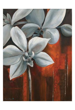 https://imgc.artprintimages.com/img/print/pearl-orchid-i-withaar_u-l-f8j3az0.jpg?p=0