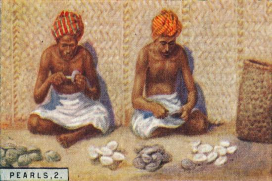 'Pearls, 2. - Openng the Oysters, Ceylon', 1928-Unknown-Giclee Print