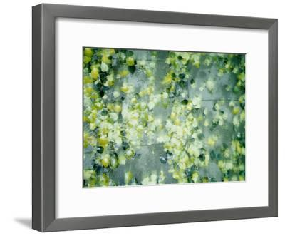 Peas in Water--Framed Photographic Print