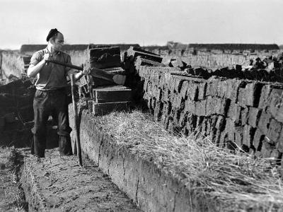 Peat Cutting, March 1954--Photographic Print