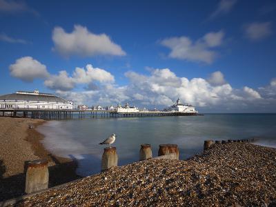 Pebble Beach and Pier, Eastbourne, East Sussex, England-Stuart Black-Photographic Print