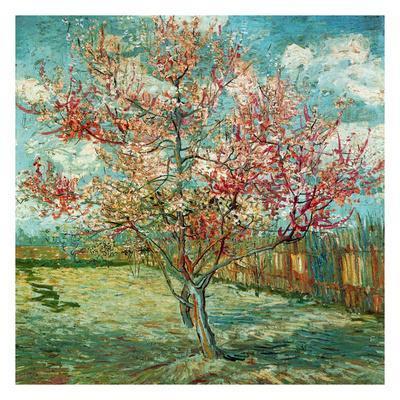 https://imgc.artprintimages.com/img/print/pecher-en-fleurs-souvenir-de-mauve_u-l-f4y3a30.jpg?p=0