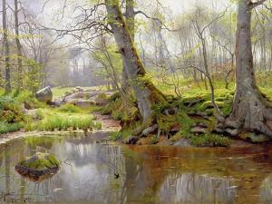Woodland Pond, 1890 by Peder Mork Monsted