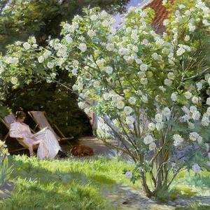 Roses, or the Artist's Wife in the Garden at Skagen, 1883 by Peder Severin Kr?yer